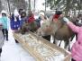 Кострома. Сумароково. Декабрь 2010